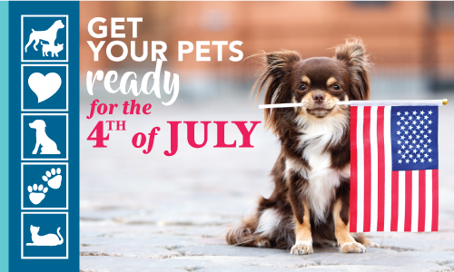 Prepare Your Pets for the 4th of July