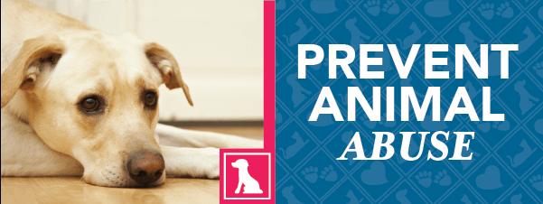 Prevent Animal Abuse