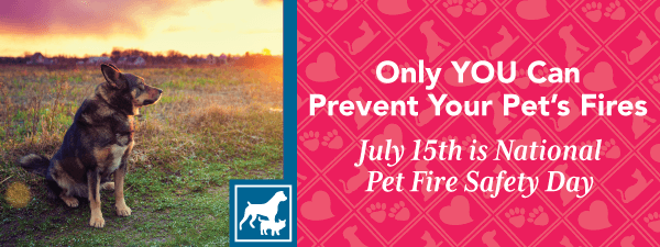 Only YOU Can Prevent Your Pet's Fires